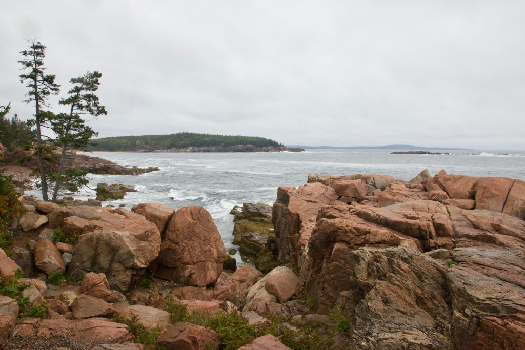 Acadia Rocky Shore