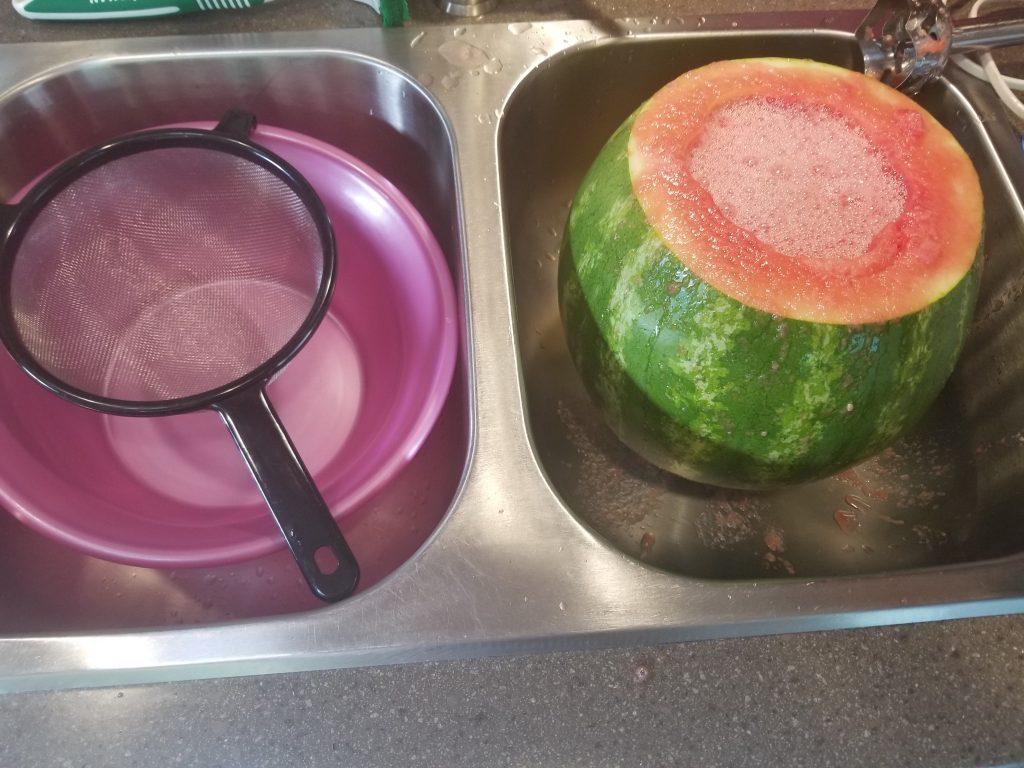 immersion blender in watermelon